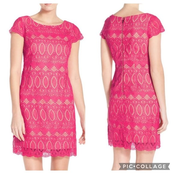 Eliza J Scalloped Lace Sheath 16 Lined Dress
